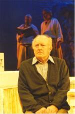 Paul Beech as John Shepard