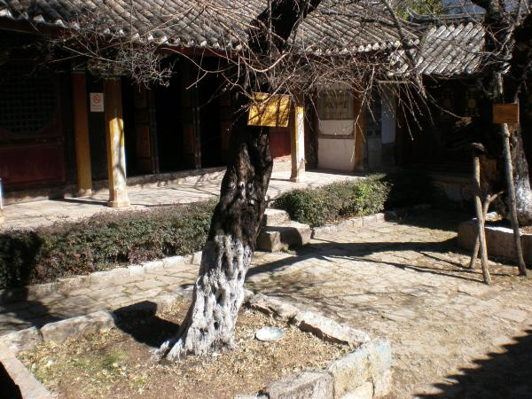 A courtyard in the museum